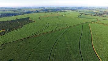 Lei torna inscrição no Cadastro Ambiental Rural obrigatória e permanente.